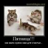 razn071