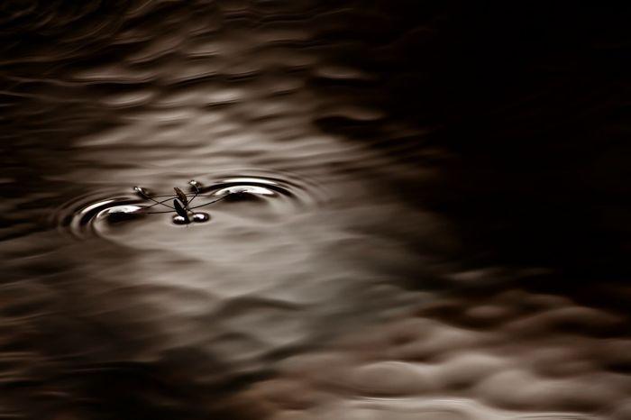 Танцуя на воде (Юлия Втюрина)