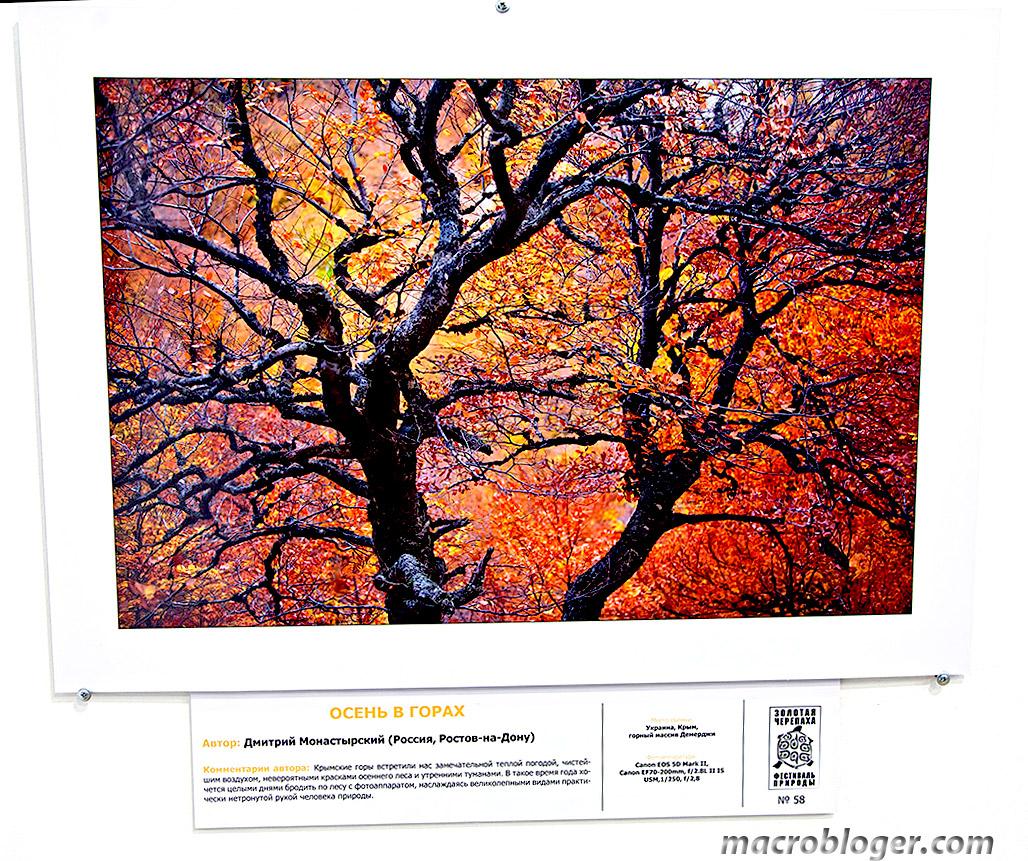 Осень в горах (Дмитрий Монастырский)